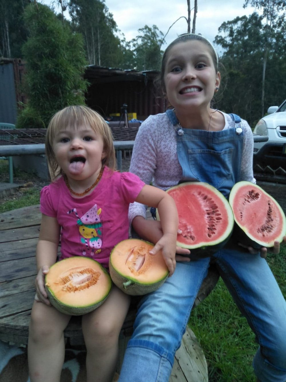 cantaloupe and watermelon grown with worm castings
